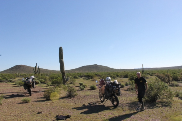 Tough Miles Blog 16: Mexico's Baja Peninsular.
